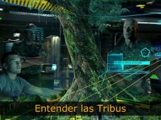 Entender las tribus en el marketing tribal